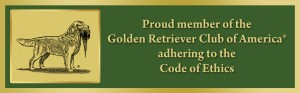 Golden Retriever Breeder