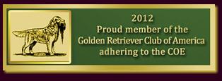 Golden Retriever Club Of America